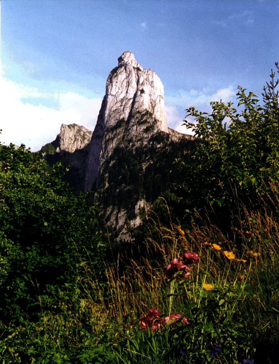 le-pic-grillon-1-848-m